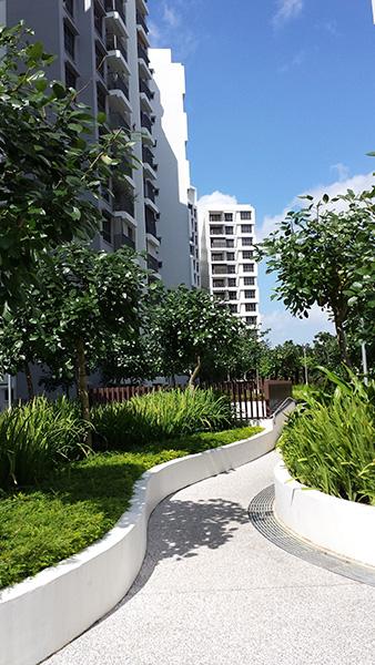 Adora Green (DBSS) – Public Housing Development