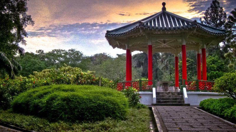 Yunnan Garden (Ongoing)